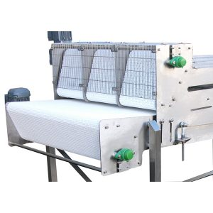 Bespoke-Conveyor